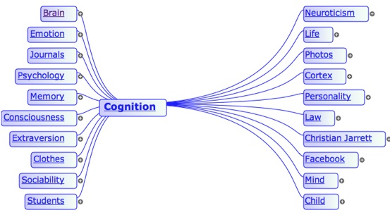 blogsummarizer cognition