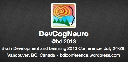Twitter for BDL 2013